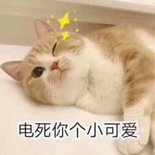 Профиль пользователя 倩婷