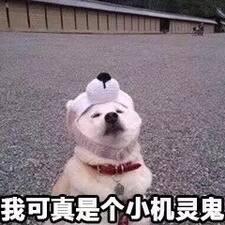 Nutzerprofil von 灵美