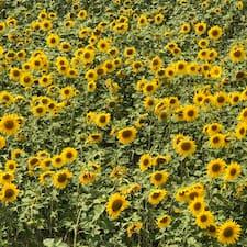 Perfil de usuario de Endless Summer