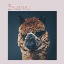 Profil Pengguna Barbaro