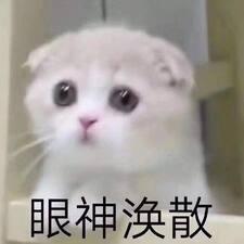 Perfil de usuario de 宁