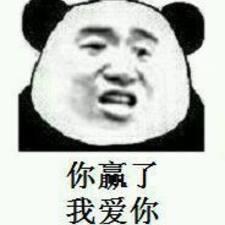 Профиль пользователя 伟哲