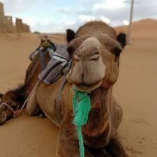 Travel To Sahara