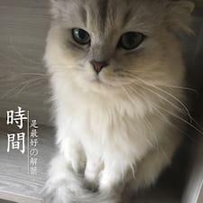 Perfil de usuario de 娟er