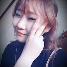Choi Kullanıcı Profili