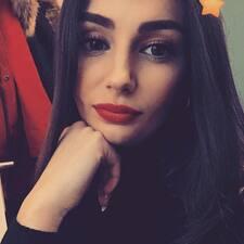 Svea User Profile