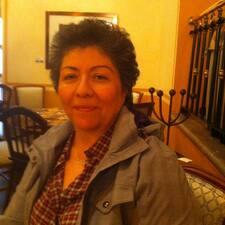 Antonieta的用戶個人資料