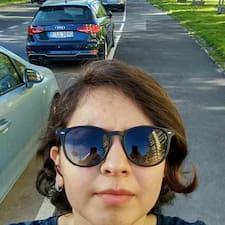 Fereshteh felhasználói profilja