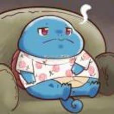 Perfil de usuario de 孤单又灿烂的杰尼龟
