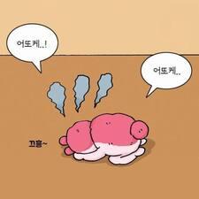Seul的用户个人资料