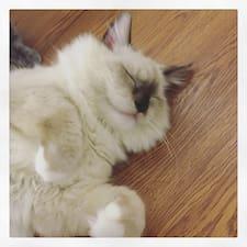 โพรไฟล์ผู้ใช้ 柏猫