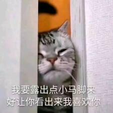 Profilo utente di 广想