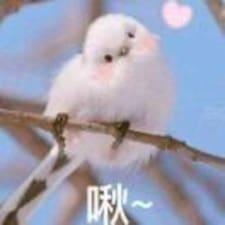 Profil utilisateur de 小阮