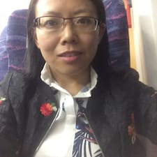 Hongping User Profile