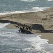 Sandy的用戶個人資料