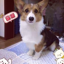 Profilo utente di 大
