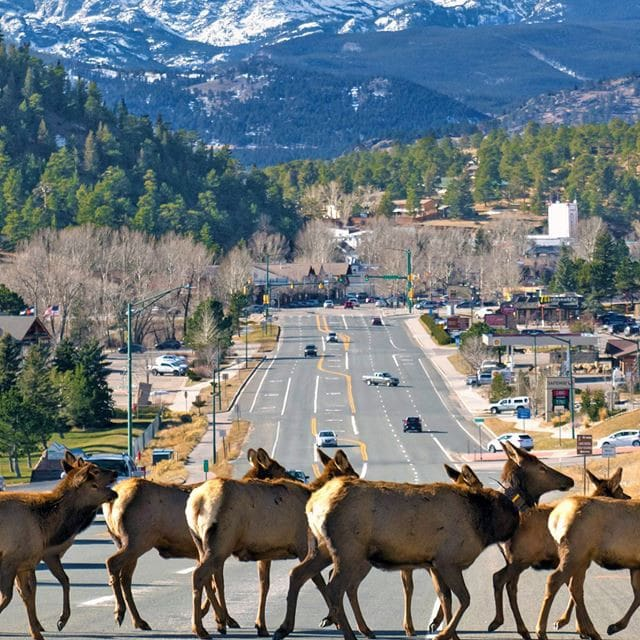 Guidebook for Estes Park