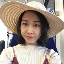 Yingsi User Profile