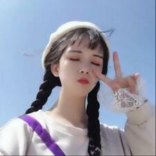Perfil de usuario de 盈盈