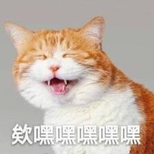 雪丽 User Profile
