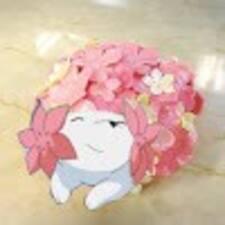 Profil utilisateur de Hikaru