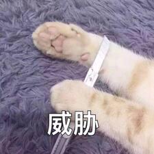 Perfil de usuario de Daofeng