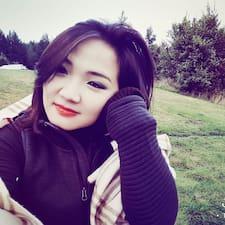 Andreani User Profile