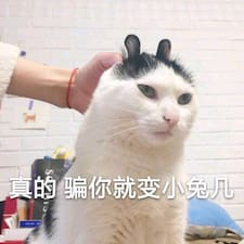 诶七 Brugerprofil