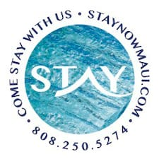 Stay Now User Profile