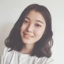 Story User Profile