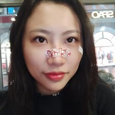 元 User Profile