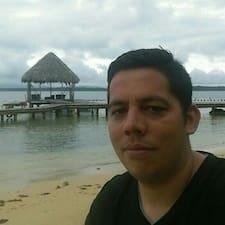 Delver User Profile