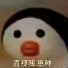 Perfil de usuario de 小时不识月