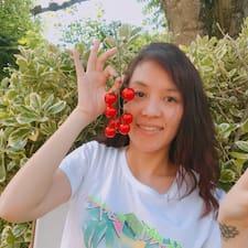 Hai Van User Profile