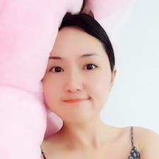 琴 User Profile