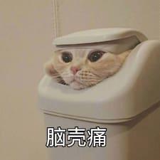 Profil korisnika 晓宇