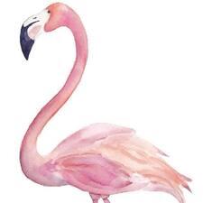 Flamingoさんのプロフィール