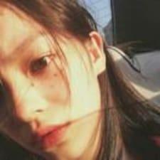 Profil Pengguna 叶桐