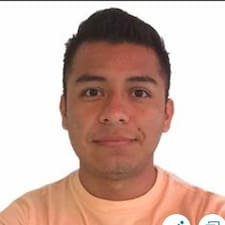 Profil Pengguna Mario