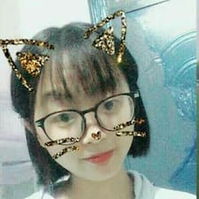 Το προφίλ του/της 龙华