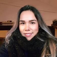 Ilse User Profile