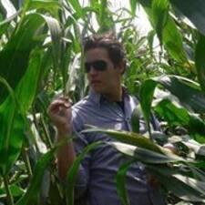 Werner Kullanıcı Profili