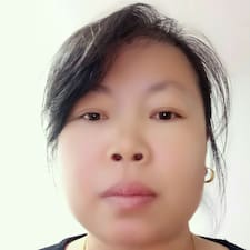 Профиль пользователя 金玲