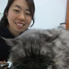 Saito User Profile