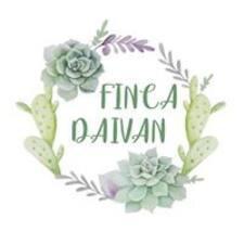 Finca felhasználói profilja