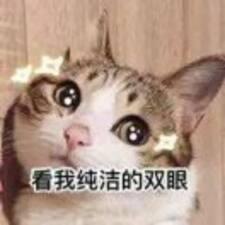 Perfil de usuario de 神秘的好人