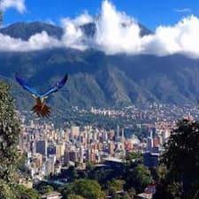 Nutzerprofil von Caracas Bande