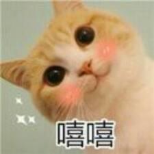 斯琳 felhasználói profilja