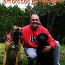Profil Pengguna Luis Francisco