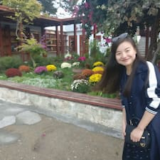 Yingjun User Profile